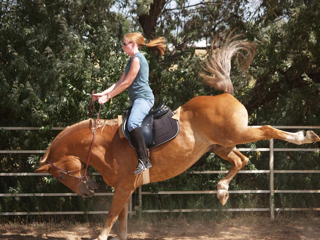ontspannen paardrijden?