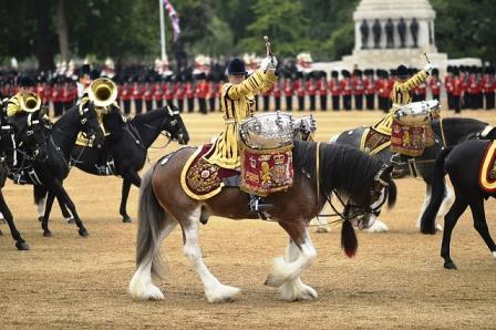 Paard met trommel: een goed ritme geeft minder taktverlies met paardrijden
