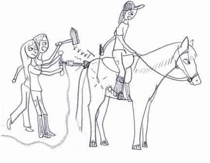 paard niet voor been