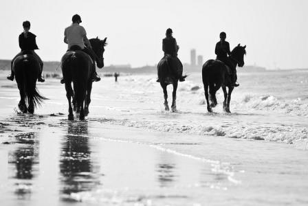 ontspannen strandrit paard